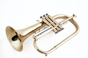 Flügelhorn (Fotolia)