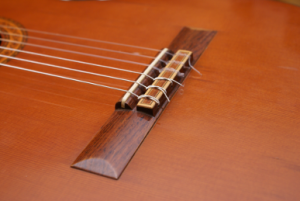 Saitenhalter einer akustischen Gitarre; der Halter ist Bestandteil der Brückenkonstruktion und sitzt hinter dem Steg auf dem Querriegel.