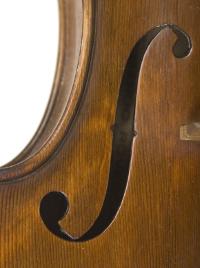 f-Loch, Violine