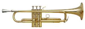 Trompete, Pumpventile