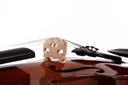 Steg einer Violine (Fotolia)